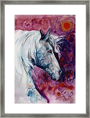 Elegant Horse Framed Print