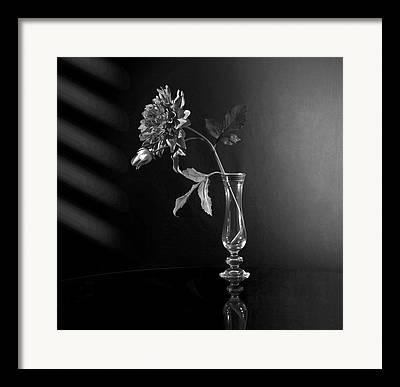 Glass Reflections Digital Art Framed Prints