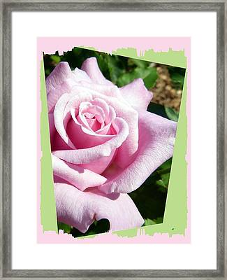 Elegant Royal Kate Rose Framed Print