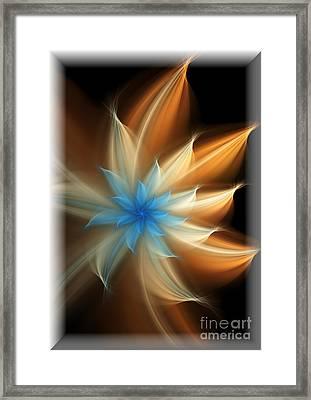 Elegant Framed Print by Svetlana Nikolova