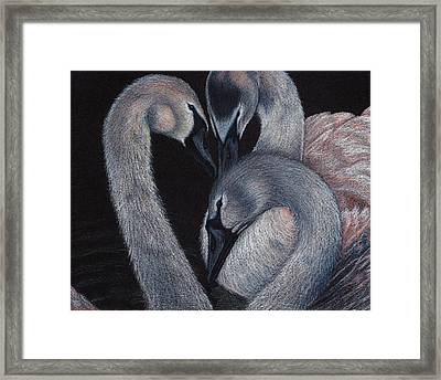 Elegant Whispers Framed Print