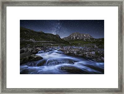 Elements Of Nature Framed Print by Chriskaddas