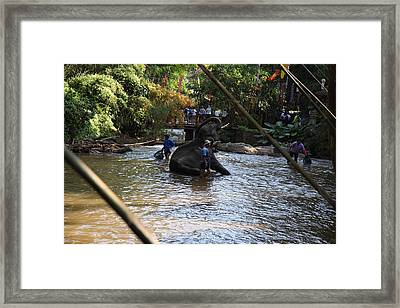 Elephant Baths - Maesa Elephant Camp - Chiang Mai Thailand - 01139 Framed Print by DC Photographer