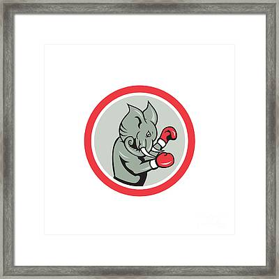 Elephant Boxer Boxing Circle Cartoon Framed Print