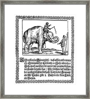 Elephant Broadsheet, C1629 Framed Print by Granger