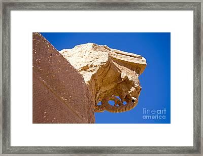 Elephant Capital, Petra, Jordan Framed Print by Adam Sylvester