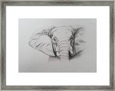 Elephant Framed Print by Ele Grafton
