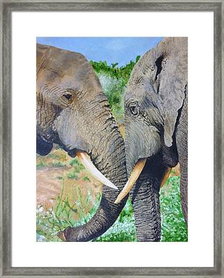Elephant Emotional Bond 14 X 16 Inch Original Oil Painting By Pigatopia Framed Print
