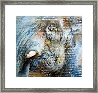 Elephant Eye Framed Print by Jieming Wang