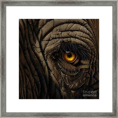 Elephant Eye Framed Print by Jurek Zamoyski