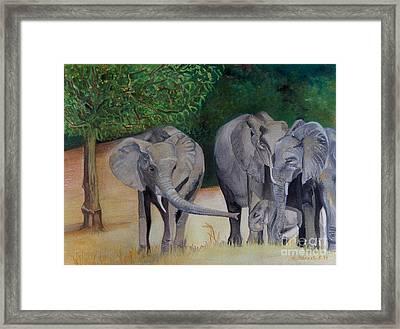 Elephant Family Gathering Framed Print by Caroline Street
