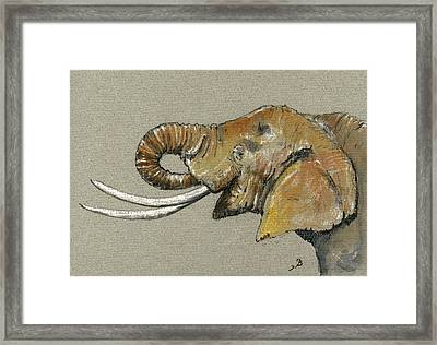Elephant Head  Framed Print by Juan  Bosco