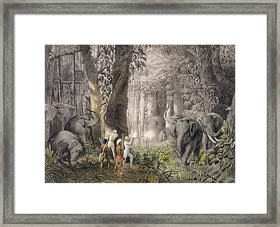 Elephant Hunt In The Region Of Logalla Framed Print by Graf Emanuel Andrasy