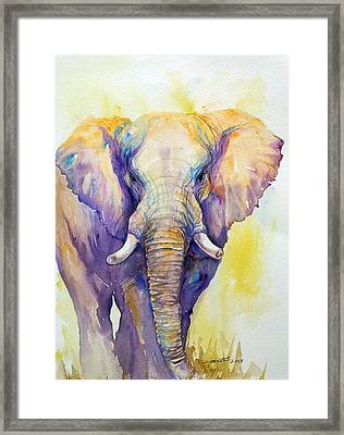 Elephant In Purple Framed Print