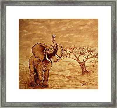Framed Print featuring the painting Elephant Majesty Original Coffee Painting by Georgeta  Blanaru