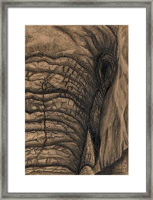 Framed Print featuring the drawing Elephant Memories by Tamyra Crossley