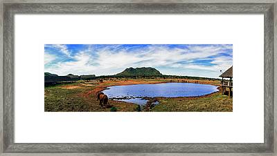 Elephant Near A Pond In Tsavo East Framed Print by Panoramic Images