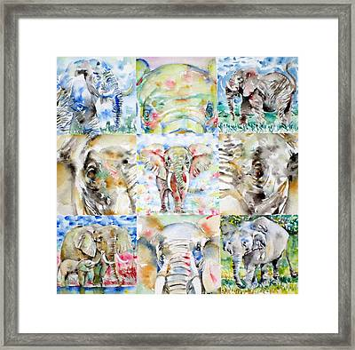 Elephant - Nine Points Of View Framed Print
