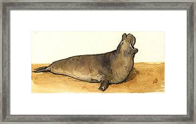 Elephant Seal Framed Print by Juan  Bosco