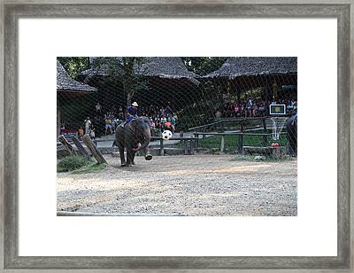 Elephant Show - Maesa Elephant Camp - Chiang Mai Thailand - 011332 Framed Print
