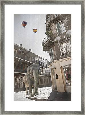 Elephants In The City Framed Print
