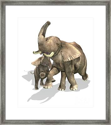 Elephants, Mother And Son Framed Print by Leonello Calvetti