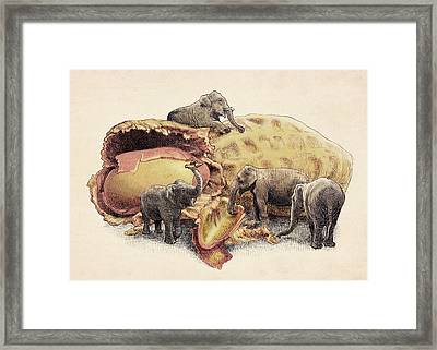 Elephant's Paradise Framed Print by Eric Fan