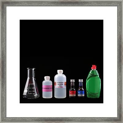 Elephant's Toothpaste Experiment Framed Print by Science Photo Library