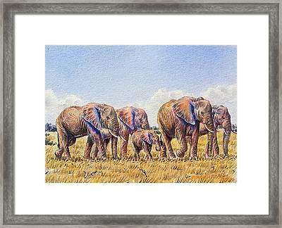 Elephants Walking Framed Print
