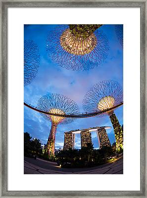 Elevated Walkway At Gardens By The Bay Framed Print by Panoramic Images