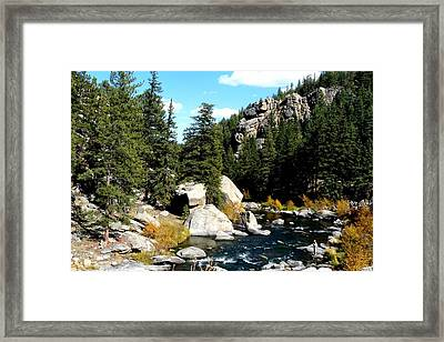 Eleven Mile Canyon Stream Framed Print