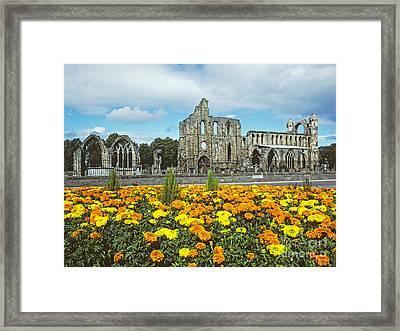Elgin Cathedral - Scotland Framed Print