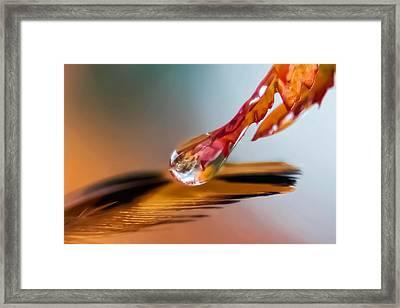 Elixir Of Faith Framed Print