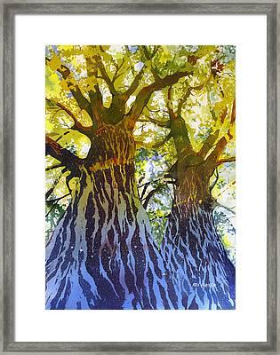 Elizabeth's Canopy Framed Print