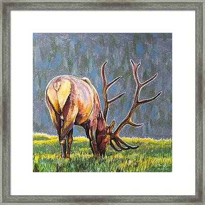 Framed Print featuring the painting Elk by Aaron Spong
