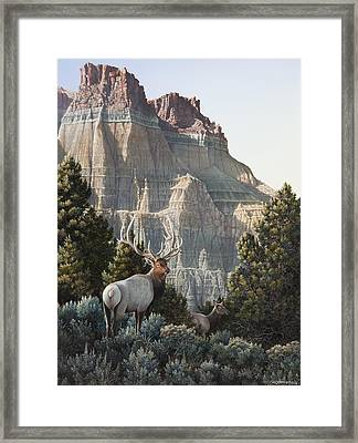 Elk At Cathedral Rock Framed Print by Mike Stinnett