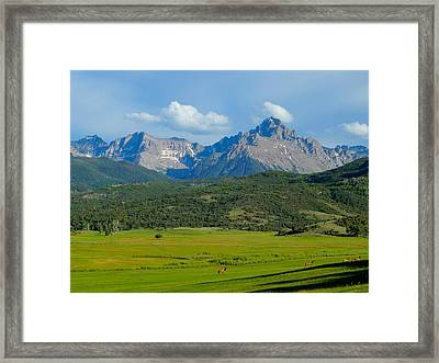 Elk Below Mount Sneffels Framed Print
