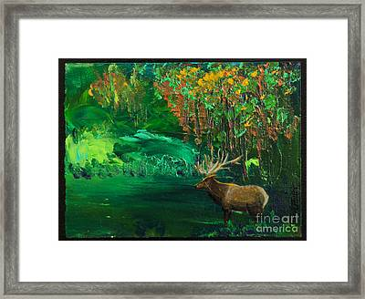 Elk Fall Framed Print by Tracy L Teeter