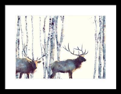 Birch Framed Prints