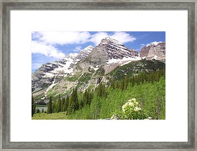 Elk Mountains Framed Print