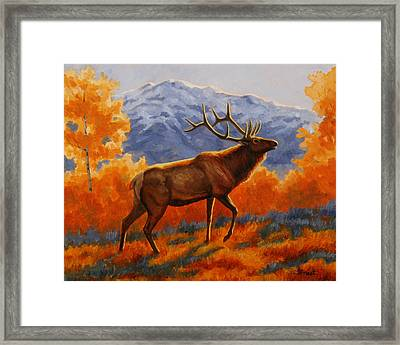 Elk Painting - Autumn Glow Framed Print by Crista Forest