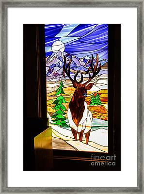 Elk Stained Glass Window Framed Print by Robert Bales