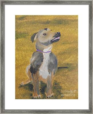 Framed Print featuring the painting Ella by Pamela  Meredith