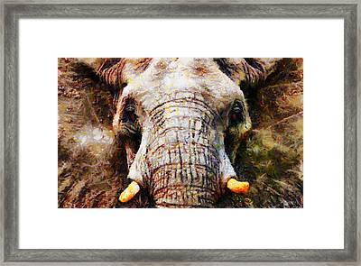 Ellie Framed Print by Christopher Lane