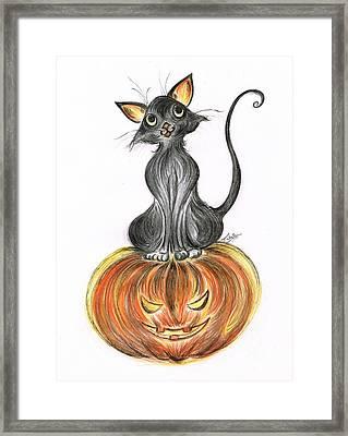 Elma's Pumpkin Framed Print