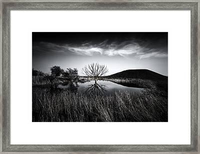 Elmley Marshes Framed Print