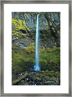 Elowah Falls Portrait Framed Print by Adam Jewell