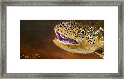 Elusive Brown Framed Print by Chad Berglund