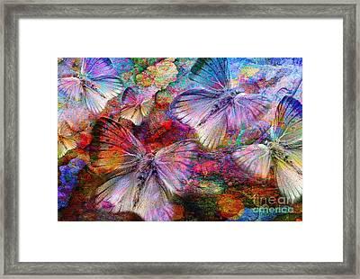 Elusive Dreams Framed Print by Jacky Gerritsen