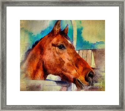 Elvis The Arabian Framed Print